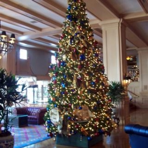 Yacht Club tree.