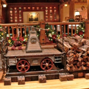 wilderness train at christmas