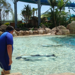 Aquatica_Sea_World_103