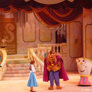 Beauty_and_the_Beast_Stage_Show_14