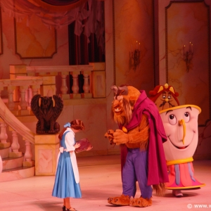 Beauty_and_the_Beast_Stage_Show_15