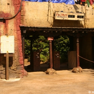 Expedition_Everest_19