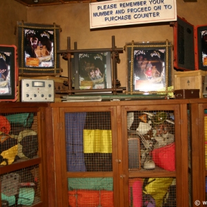 Expedition_Everest_Shop_07