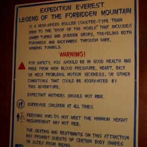 Expedition_Everest_Train_02