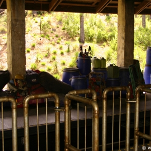 Expedition_Everest_Train_03