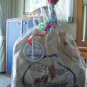 Dis Unplugged goody bag