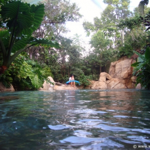Discovery_Cove_Tropical_Pool_02