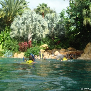 Discovery_Cove_Tropical_Pool_07