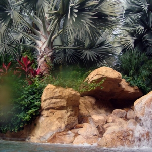 Discovery_Cove_Tropical_Pool_08