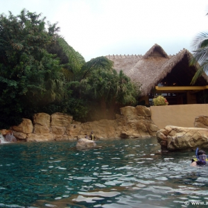 Discovery_Cove_Tropical_Pool_09