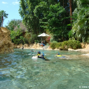 Discovery_Cove_Tropical_Pool_10