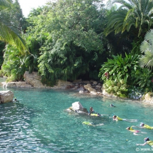Discovery_Cove_Tropical_Pool_15