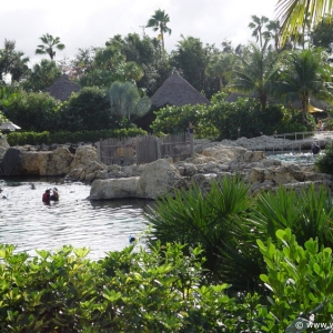Discovery_Cove_Tropical_Pool_18