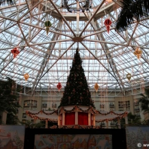 ICE_Gaylord_Palms_Resort_078