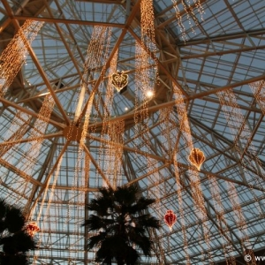 ICE_Gaylord_Palms_Resort_081