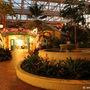 ICE_Gaylord_Palms_Resort_082