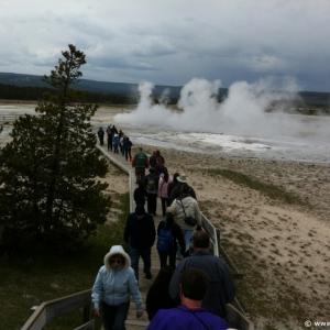 6-Lower-Geyser-Basin-011