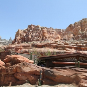 Radiator-Springs-Racers-044