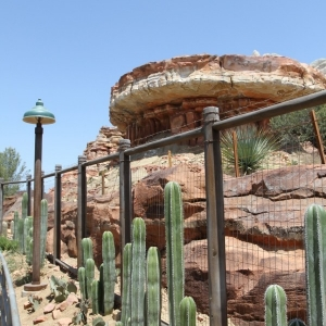 Radiator-Springs-Racers-055