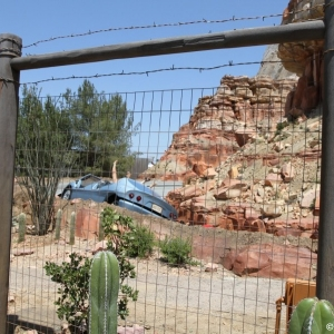 Radiator-Springs-Racers-056