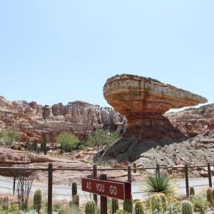Radiator-Springs-Racers-059