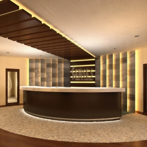 DM_Senses_Spa-Salon_reception