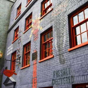 WDWINFO-Universal-Diagon-Alley-032