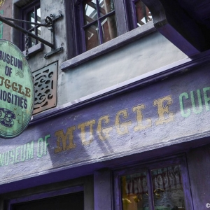 WDWINFO-Universal-Diagon-Alley-061