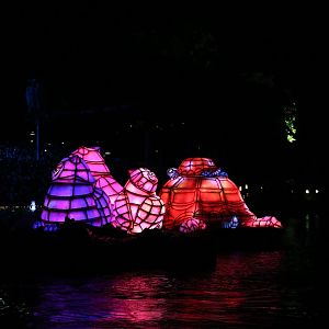 Rivers-of-Light-038