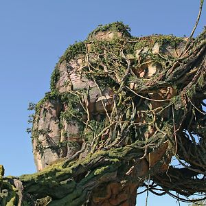 Pandora World of Avatar - Look up at the floating mountain