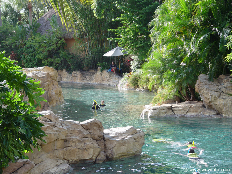 Discovery_Cove_Tropical_Pool_19 | The DIS Disney ...