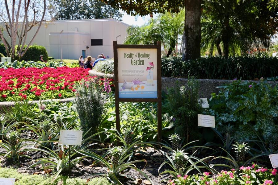 Flower Garden Festival 2017 113 The Dis Disney Discussion Forums