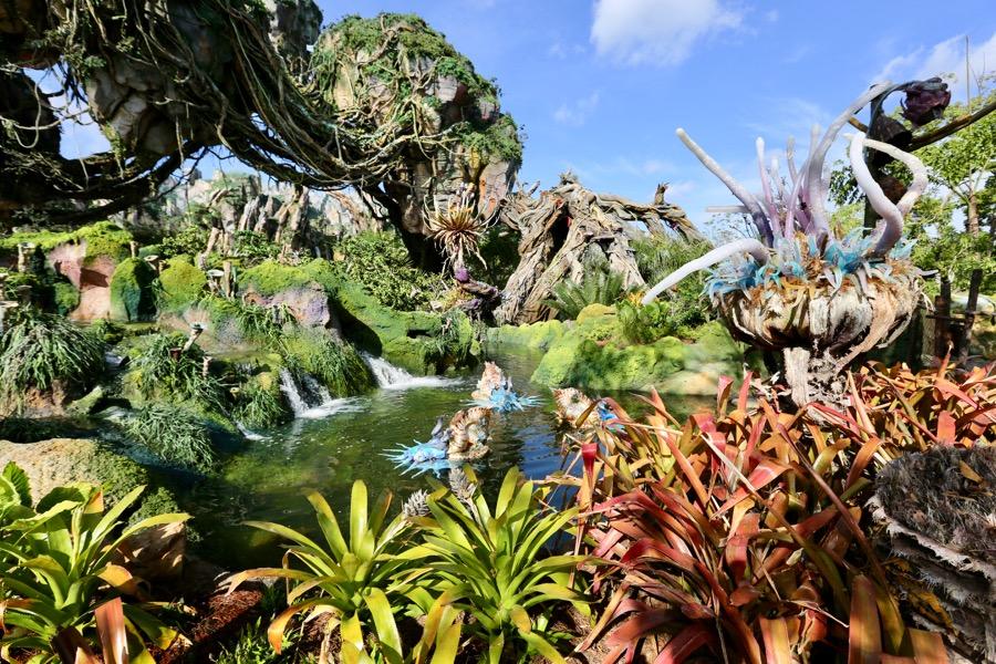 Disney World Florida Map.Pandora The World Of Avatar Disney S Animal Kingdom